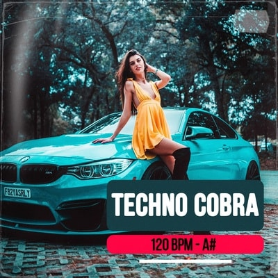Techno Cobra track buy Ghost Producer