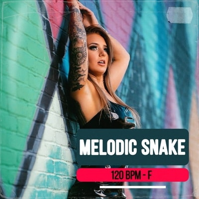 Melodic Snake track buy Ghost Producer