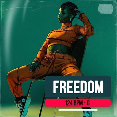 Freedom track buy Ghost Producer