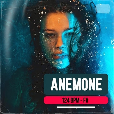 Anemone track buy Ghost Producer
